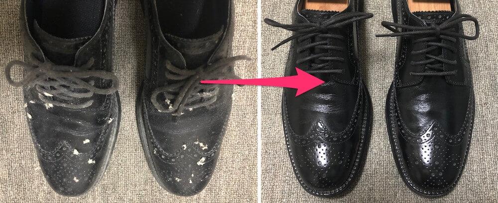 綺麗に手入れしたウイングチップの革靴